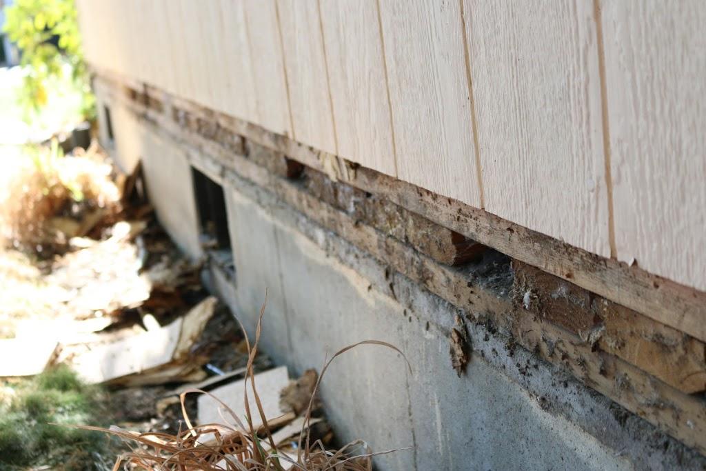 How to replace rotted T1-11 / LP siding with a belly band